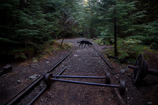 Mine tracks