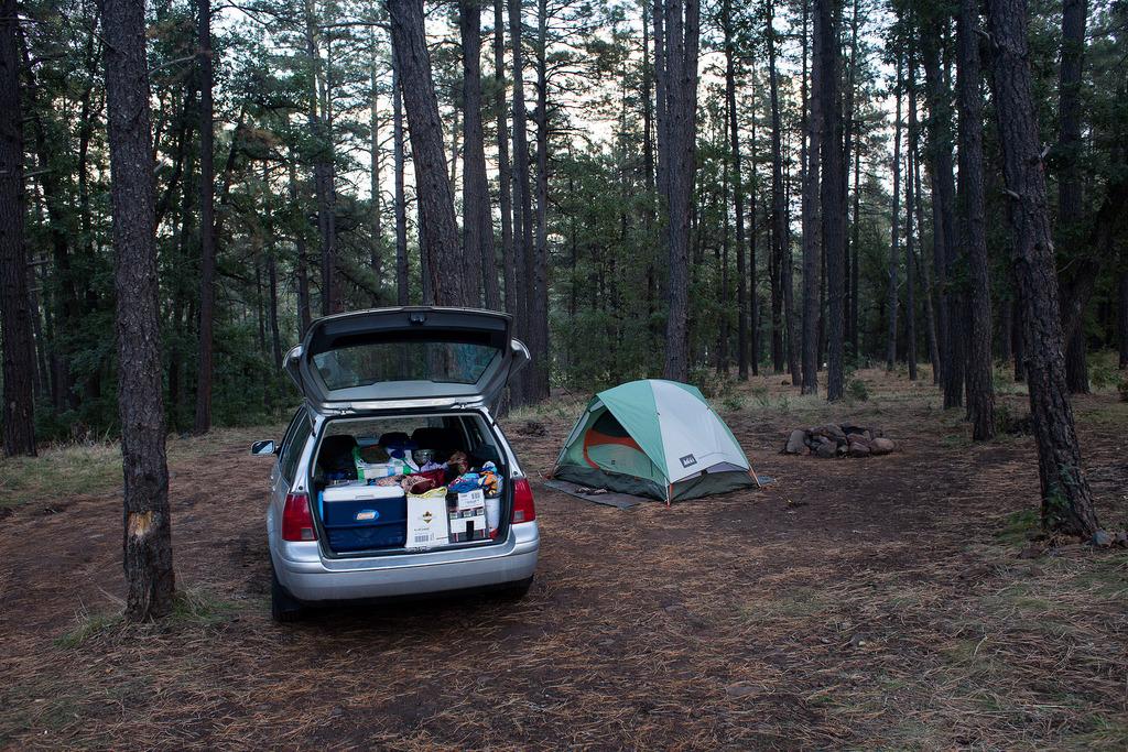 Oak Creek Canyon campsite